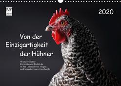 Von der Einzigartigkeit der Hühner 2020 (Wandkalender 2020 DIN A3 quer) von Peters,  Birte