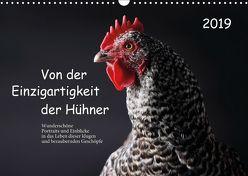 Von der Einzigartigkeit der Hühner (Wandkalender 2019 DIN A3 quer) von Peters,  Birte