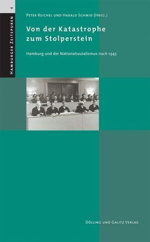Von der Katastrophe zum Stolperstein von Reichel,  Peter, Schmid,  Harald