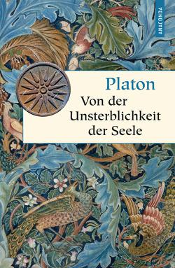 Von der Unsterblichkeit der Seele von Apelt,  Otto, Platon