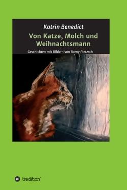 Von Katze, Molch und Weihnachtsmann von Benedict,  Katrin, Pietzsch,  Romy