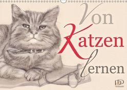 Von Katzen lernen (Wandkalender 2018 DIN A3 quer) von Kunst & Design,  Dany's