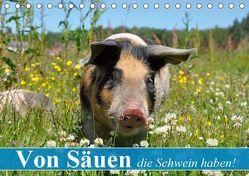 Von Säuen die Schwein haben! (Tischkalender 2019 DIN A5 quer) von Stanzer,  Elisabeth