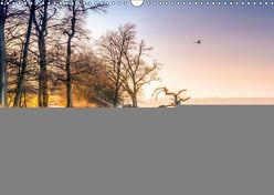 Vorpommern – von Altefähr bis Zinnowitz (Wandkalender 2019 DIN A3 quer)