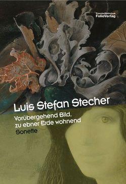 Vorübergehend Bild, zu ebner Erde wohnend von Stecher,  Luis St