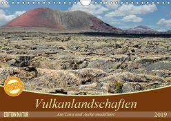 Vulkanlandschaften – Aus Lava und Asche modelliert (Wandkalender 2019 DIN A4 quer) von Gärtner,  Oliver