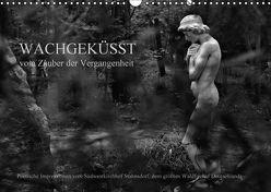 Wachgeküsst – Vom Zauber der Vergangenheit – Südwestkirchhof Stahnsdorf (Wandkalender 2018 DIN A3 quer) von Hunscha,  Anké