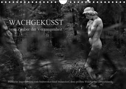 Wachgeküsst – Vom Zauber der Vergangenheit – Südwestkirchhof Stahnsdorf (Wandkalender 2019 DIN A4 quer) von Hunscha,  Anké