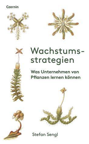 Wachstumsstrategien von Sengl,  Stefan