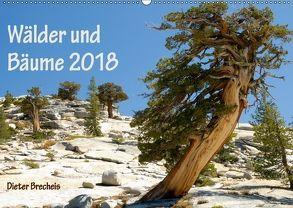 Wälder und Bäume 2018 (Wandkalender 2018 DIN A2 quer) von Brecheis,  Dieter