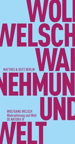 Wahrnehmung und Welt von Fehrenbach,  Frank, Welsch,  Wolfgang