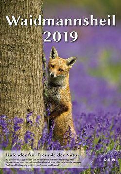 Waidmannsheil 2019