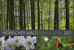 Wald nah und fern Edition Kalender 2021 von Heye, Schmidbauer,  Heinz