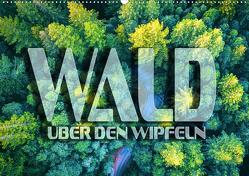 Wald – über den Wipfeln (Wandkalender 2021 DIN A2 quer) von Bleicher,  Renate
