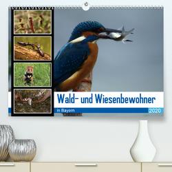 Wald- und Wiesenbewohner in Bayern 2020 (Premium, hochwertiger DIN A2 Wandkalender 2020, Kunstdruck in Hochglanz) von Erlwein,  Winfried