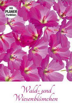Wald- und Wiesenblümchen (Wandkalender 2019 DIN A2 hoch) von Eppele,  Klaus