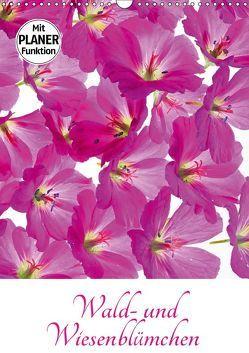 Wald- und Wiesenblümchen (Wandkalender 2019 DIN A3 hoch) von Eppele,  Klaus