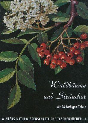 Waldbäume, Sträucher und Zwergholzgewächse von Fickler,  H H, Haller,  K E, Hartmann,  F K