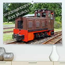 Waldeisenbahn Bad Muskau (Premium, hochwertiger DIN A2 Wandkalender 2021, Kunstdruck in Hochglanz) von Valley,  Joy