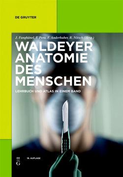Waldeyer – Anatomie des Menschen von Anderhuber,  Friedrich, Fanghänel,  Jochen, Nitsch,  Robert, Pera,  Franz, Waldeyer,  Anton Johannes