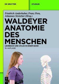 Waldeyer – Anatomie des Menschen von Anderhuber,  Friedrich, Pera,  Franz, Streicher,  Johannes, Waldeyer,  Anton