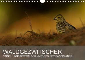 Waldgezwitscher – Vögel unserer Wälder (Wandkalender 2021 DIN A4 quer) von Krebs,  Alexander