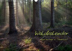Waldkalender (Wandkalender 2019 DIN A3 quer) von Zitzler,  Hans