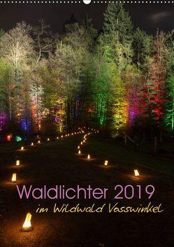 Waldlichter im Wildwald Vosswinkel 2019 (Wandkalender 2019 DIN A2 hoch) von Lieder,  Britta