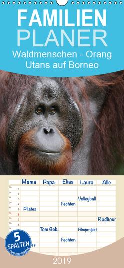 Waldmenschen – Orang Utans auf Borneo – Familienplaner hoch (Wandkalender 2019 , 21 cm x 45 cm, hoch) von Herzog,  Michael