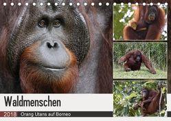 Waldmenschen – Orang Utans auf Borneo (Tischkalender 2018 DIN A5 quer) von Herzog,  Michael