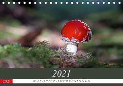 Waldpilz-Impressionen (Tischkalender 2021 DIN A5 quer) von Flori0