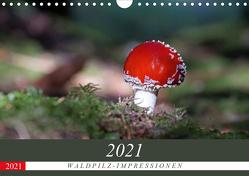 Waldpilz-Impressionen (Wandkalender 2021 DIN A4 quer) von Flori0
