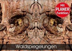 Waldspiegelungen (Wandkalender 2019 DIN A2 quer) von Schlüfter,  Elken