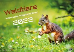 Waldtiere – Heimische Waldbewohner – Der Tierkalender – 2022 – Kalender DIN A2