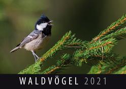 Waldvögel 2021 von Quelle & Meyer Verlag