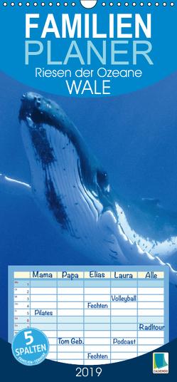 Wale: Riesen der Ozeane (Wandkalender 2019 , 21 cm x 45 cm, hoch) von CALVENDO
