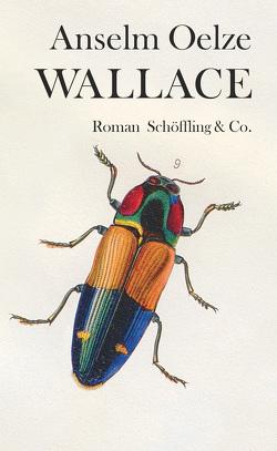 Wallace von Oelze,  Anselm