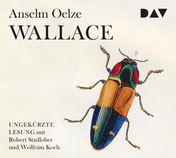 Wallace von Koch,  Wolfram, Oelze,  Anselm, Stadlober,  Robert
