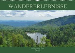 Wandererlebnisse im Bayrischen Wald (Wandkalender 2020 DIN A2 quer) von Janke,  Andrea
