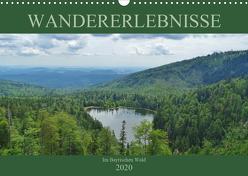 Wandererlebnisse im Bayrischen Wald (Wandkalender 2020 DIN A3 quer) von Janke,  Andrea