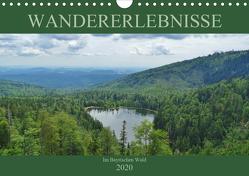 Wandererlebnisse im Bayrischen Wald (Wandkalender 2020 DIN A4 quer) von Janke,  Andrea