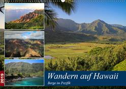 Wandern auf Hawaii – Berge im Pazifik (Wandkalender 2019 DIN A2 quer) von Krauss,  Florian