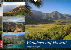 Wandern auf Hawaii – Berge im Pazifik (Wandkalender 2019 DIN A3 quer) von Krauss,  Florian