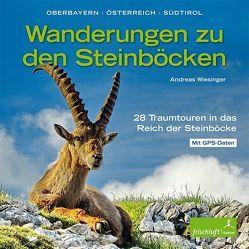 Wanderungen zu den Steinböcken von Baur,  Katrin Susanne, Reimer,  Michael, Wiesinger,  Andreas