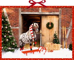 Wandkalender – Dotti feiert Weihnachten von Ebbert,  Leonie
