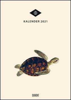 Wandkalender »Menagerie« – Historische Tier-Zeichnungen modern interpretiert – Von 30×40 – 29,7 x 42 cm – Mit Spiralbindung