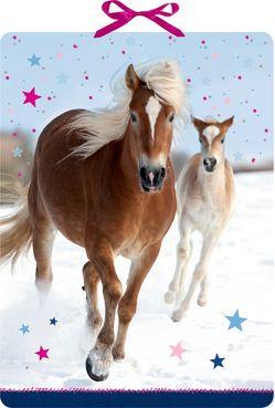 Wandkalender – Pferdefreunde im Schnee