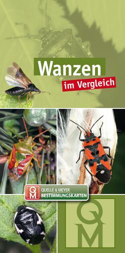 Wanzen von Quelle & Meyer Verlag