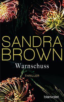 Warnschuss von Brown,  Sandra, Göhler,  Christoph