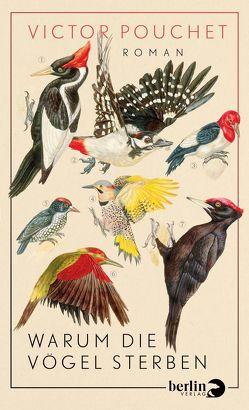 Warum die Vögel sterben von Eglinger,  Yvonne, Pouchet,  Victor